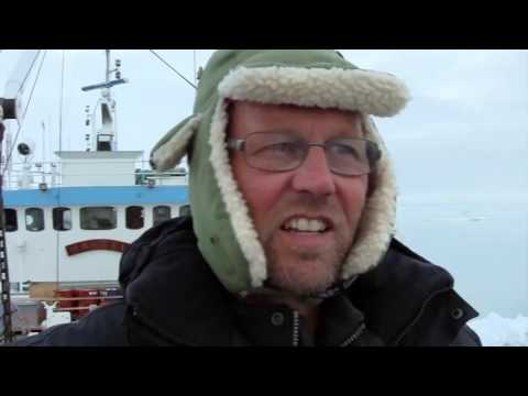 To The Arctic   Life Under Water Featurette