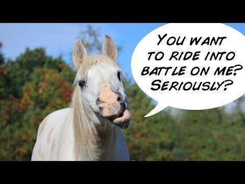 Cavalry was a stupid idea