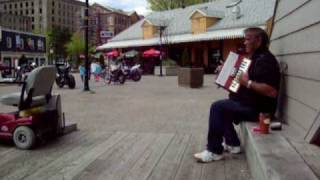 Accordion Player on the Hali boardwalk.