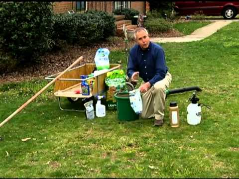 Spring Lawn Care in Virginia