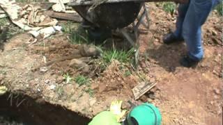 Coveiros fazendo exumação sem os equipamentos de segurança