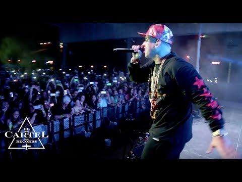 Daddy Yankee - Isla del Padre Texas 2014 HD