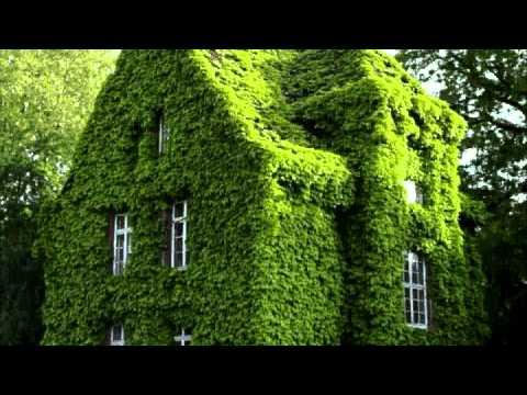 Jardines verticales youtube for Jardines verticales