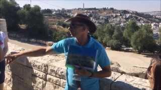 Израиль.  Экскурсия по священному городу Иерусалим