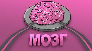 CS:GO - Мозг