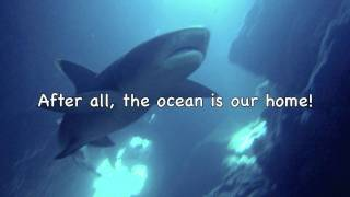 KEEP THE OCEAN CLEAN by Birdsong and the Eco-Wonders