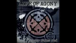 Watch Life Of Agony The Stain Remains video