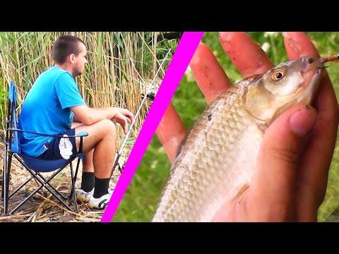 весенняя рыбалка на прудах видео