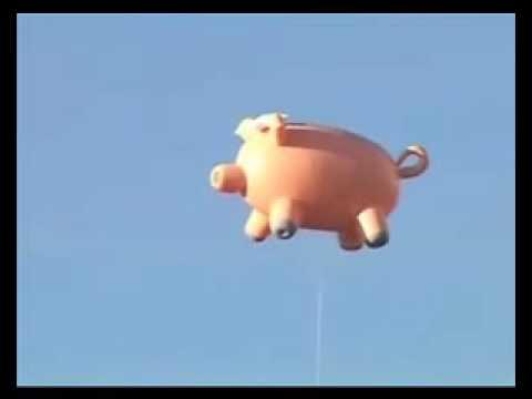Eisregen - Futter Fã¬R Die Schweine