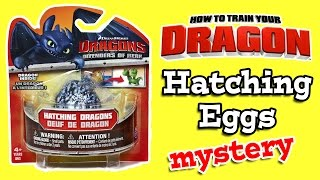 How To Train Your Dragon Hatching Dragon Eggs