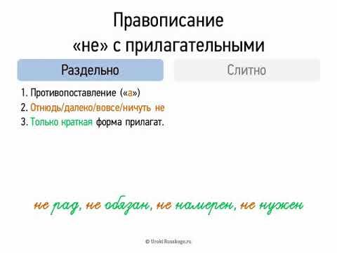 Правописание НЕ с прилагательными (6 класс, видеоурок-презентация)