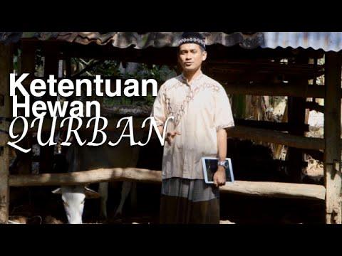 Serial Fikih Islam 2 - Episode 11: Ketentuan Hewan Qurban - Ustadz Abduh Tuasikal