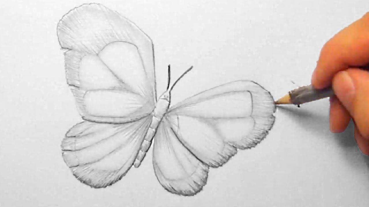 schmetterling zeichnen im zeitraffer butterfly drawing in fast motion hd youtube. Black Bedroom Furniture Sets. Home Design Ideas