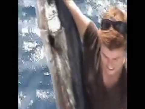 Miami charter fishing boat - Sailfish