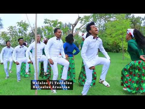 Hacaaluu Araarsaa: Jarumaafi  ** Oromo Music 2018 New thumbnail