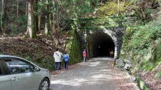 【車載動画】 天城峠(旧街道) Amagi pass / Japanese mountain pass