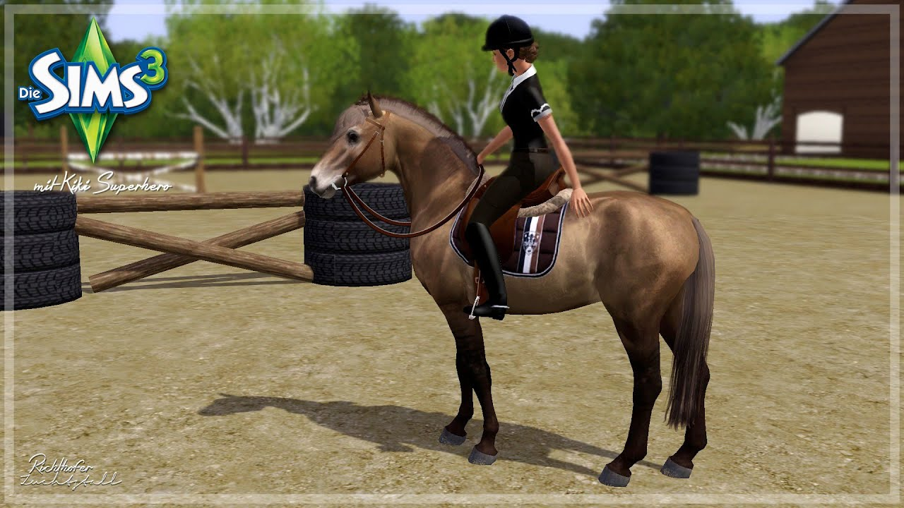 Przewalski Pferd Reiten Przewalski Pferd