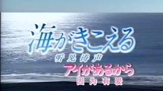 Puedo escuchar el mar Ocean Waves Drama Special 1995