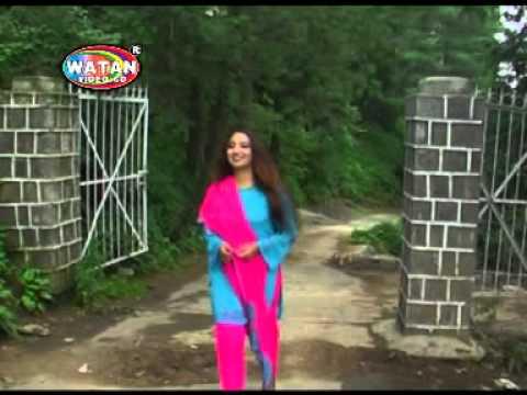 hindko new afshan zaibi song