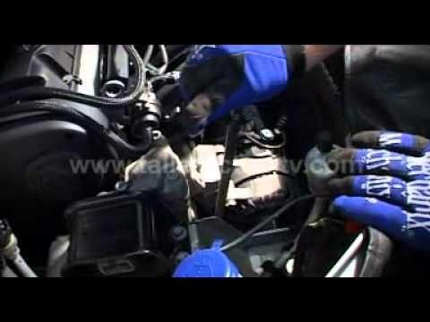 Peugeot 307 Desmontaje Distribucion