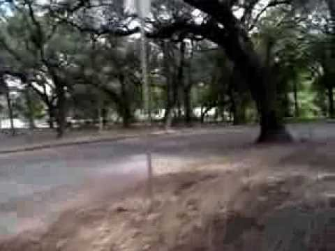 Brackenridge Park Train Part One: The Start