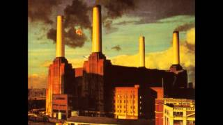 PINK FLOYD. PIGS (THREE DIFFERENT ONES). ANIMALS. 1080P