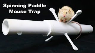 The Spinning Paddle Mouse Trap Catches A Bucket Full Of Mice. Mousetrap Monday