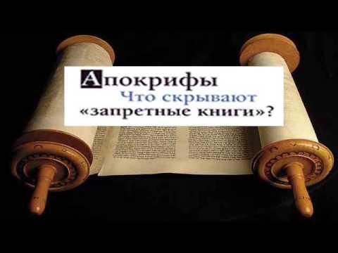 Иерархи поместных церквей поддержали каноническую церковь на украине - православный журнал фома