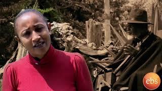 አርአያ ሠብ(የነጋድራስ ተሰማ እሸቴ ዘጋቢ ፊልም ) Who is Who Negaderas Tesema Eshete Documentery