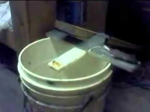 Trampa casera para ratas ratones como youtube - Como atrapar ratones ...