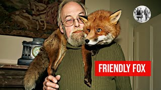 Friendly fox becomes house pet