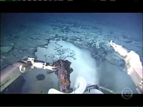 Primeiras imagens do fundo do Oceano Atlântico Sul são divulgadas