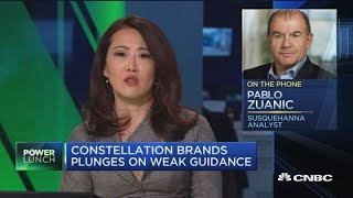 Wine, spirits sales fall flat for Constellation Brands