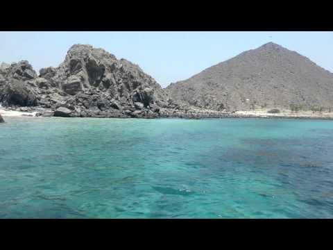 Shark Island - KhorFakkan UAE شارك ايلاند - خورفكان