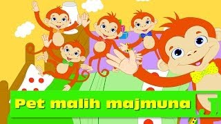 download lagu Pet Malih Majmuna  Dečije Pesme  Jaccoled gratis