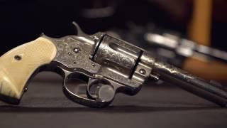 Stunning Cartridge Colts