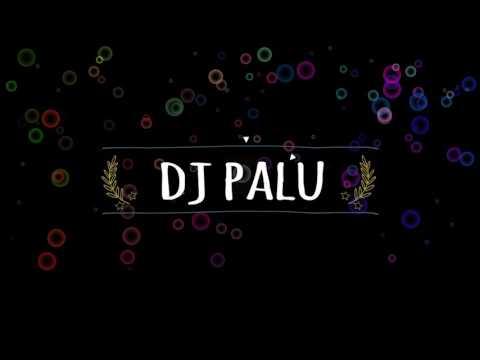 roll the bass dj palu ( coming soon)