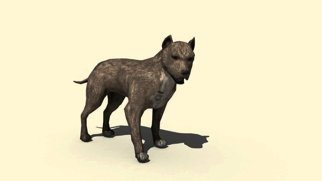 Animal Animation Tutorial Animal Animation 3ds Max