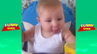 Funny Kids Videos Babies Eating Lemons for The First