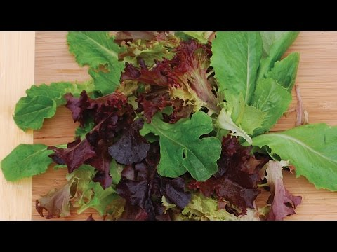 How To Plant & Grow Lettuce