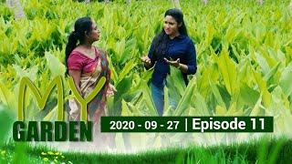 My Garden | Episode 11 | 27 - 09 - 2020