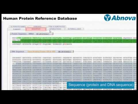 Human Protein Reference Database
