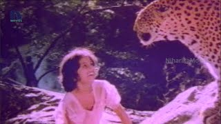 Tarzan Sundari Telugu Full Movie Part 2 || Silk Smitha, Jamuna, Vinod