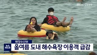 올여름 도내 해수욕장 이용객 급감