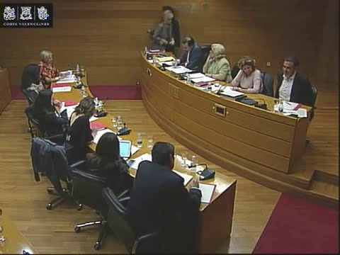 El traumatismo democrático del gobierno valenciano del PP (SUB CAS)