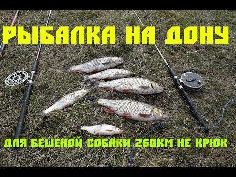 ловля сома в липецкой области