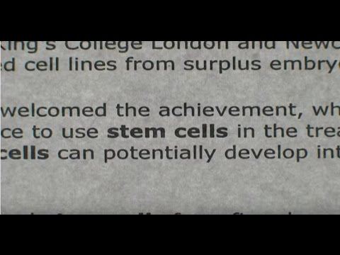 A Stem Cell Story