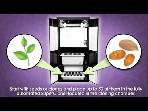 Supercloset Review   Grow Rooms   Hydroponic Systems   How To Grow Indoors