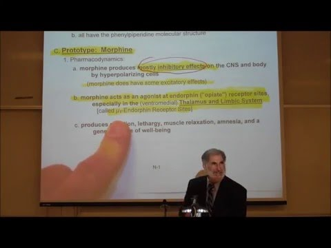 PHARMACOLOGY; NARCOTIC ANALGESICS by Professor Fink thumbnail