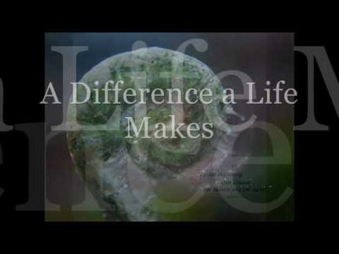 A Difference a Life Makes Tribute to Earth